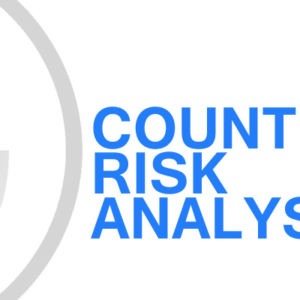 Gavin Consulting - Country Risk Analysis