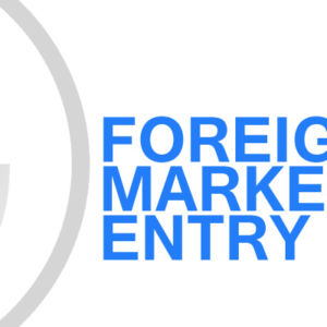 Gavin Consulting - Foreign Market Entry Analysis