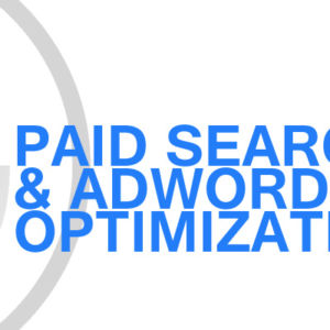 Gavin Consulting - Paid Search and Adwords Optimization