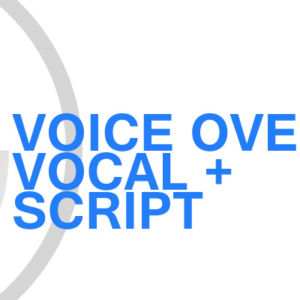 Gavin Consulting - Voice Over Vocal and Script